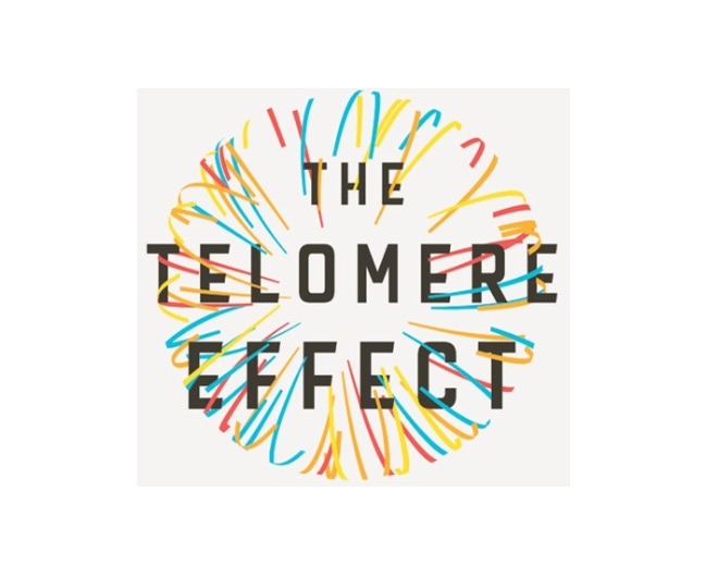 Telomeres – You Can Increase Your Health Span